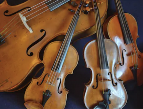 Call for young string quartets